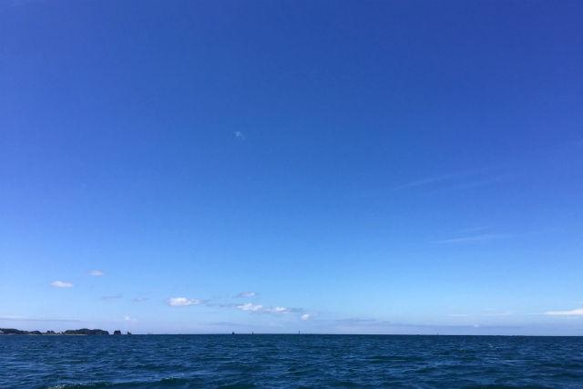 【和歌山・南紀白浜・無人島ツアー】無人島ツアー(3時間)