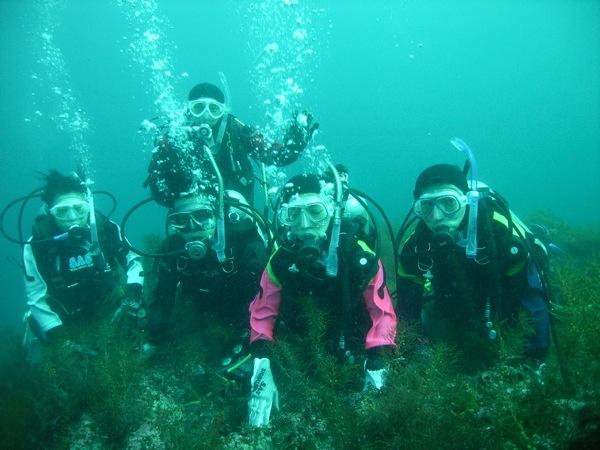 【新潟・柏崎市・体験ダイビング】お魚と一緒に水中散歩!地元ダイバーがご案内