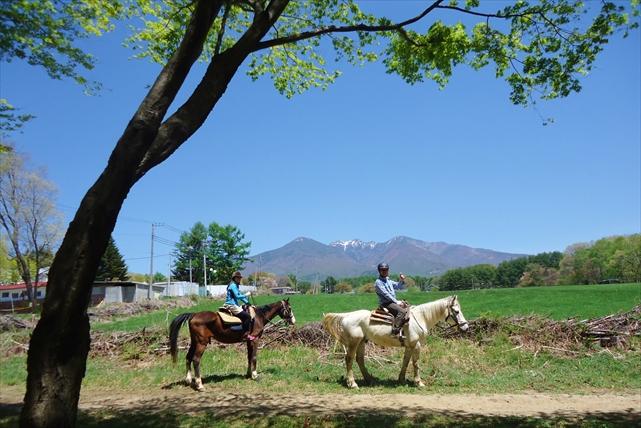 【山梨・乗馬】お食事券付き!馬との森林浴を楽しむ、癒しの日帰りプラン