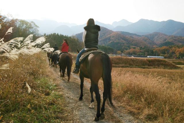 【1日・ホーストレッキング】自然を満喫★じっくり楽しむ乗馬体験