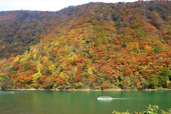 【約60分】最上峡の四季の景色を楽しめる、最上川芭蕉ライン舟下り