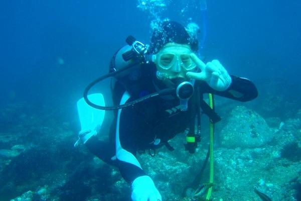 【伊豆・体験ダイビング】完全少人数制で安心!伊豆の海へ潜ろう