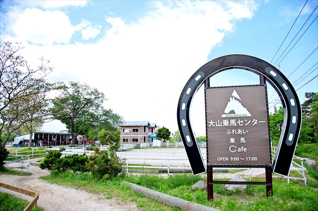 【お散歩コース】鳥取・大山で乗馬体験!初心者でも楽しめますの写真
