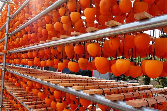 【山梨・あんぽ柿づくり】無添加のおやつを作ろう!高級和菓子「あんぽ柿」
