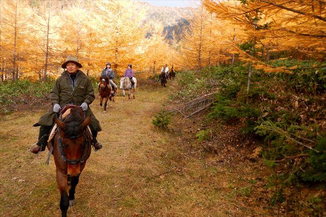 【北海道・乗馬体験】経験者向け、険しい山道を進もう!北海道の絶景を臨むカントコース!