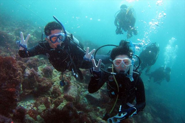 【静岡県・富戸・ファンダイビング】 富戸の海でファンダイビング。日ごろの疲れを海で癒そう!