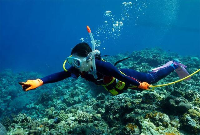 久米島ダイビングセンター しらはまマリン
