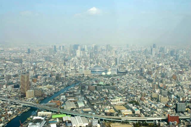 【大阪・飛行機遊覧・昼35分】神戸市内を小型飛行機で!優雅な市内観光を楽しもう
