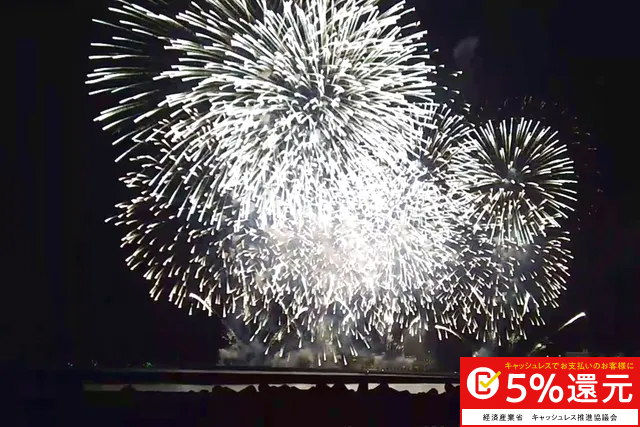 静岡・熱海・海上花火鑑賞クルーズ(1時間15分)