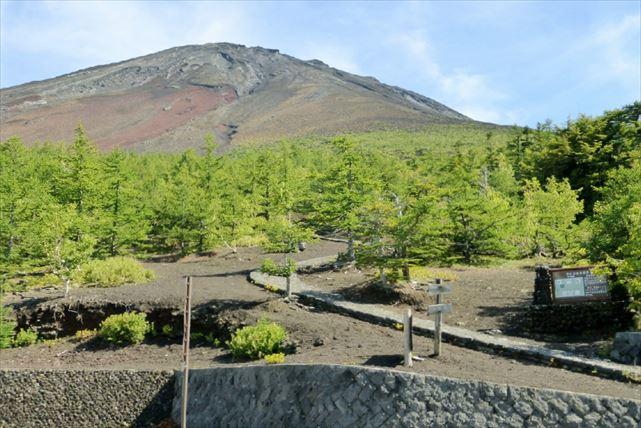 山梨県立富士北麓駐車場
