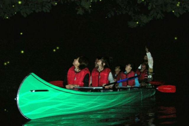 【長野青木湖・ホタル観賞クルーズ】グループで幻想的な風景を独占するホタル観賞冒険散歩貸切クルーズ
