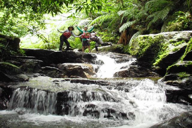 【西表島・1日・カヌー】びしょぬれになって遊ぼう!アダナデの滝&シャワークライミング