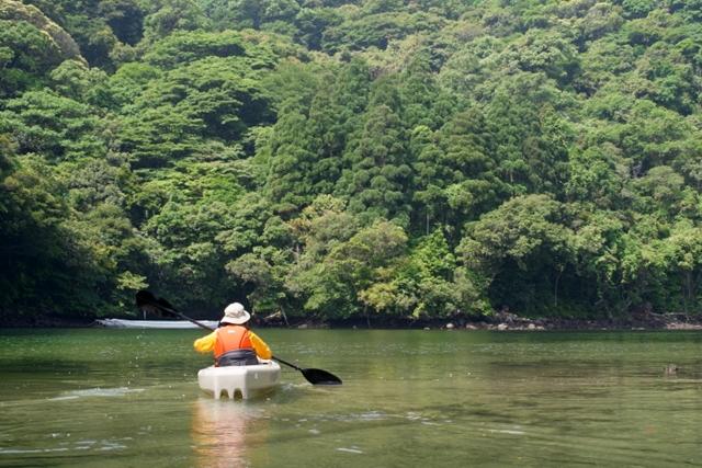 【屋久島・カヌー】水の島・屋久島をカヌーでクルージング!