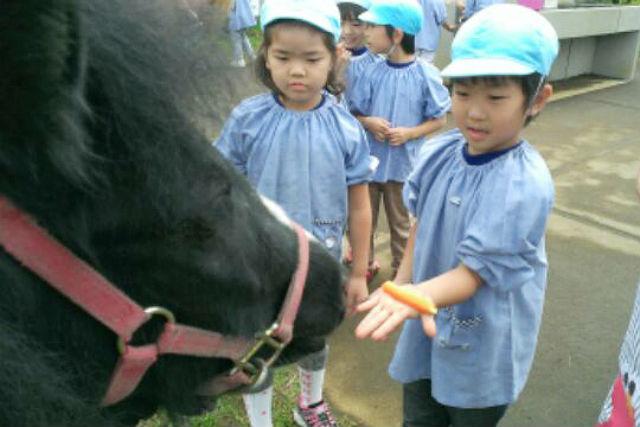 【神奈川・乗馬体験】礼儀やマナーが自然と身につく!キッズ向け乗馬スクール