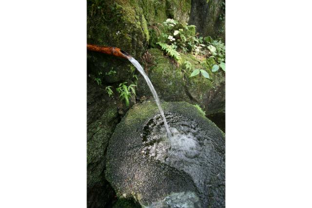 【埼玉県長瀞・魚つかみ取り体験&BBQ】山の恵みを満喫!湧き水の魚をつかみ取ろう!