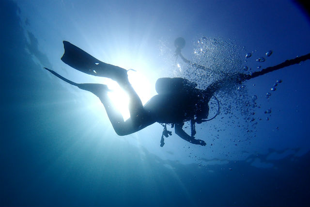 【鹿児島・ファンダイビング】2回のダイブで海を満喫!秋目湾内ボートダイビング