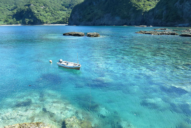 【鹿児島・ファンダイビング】ボートで渡るプライベートビーチで2ダイブのダイビング