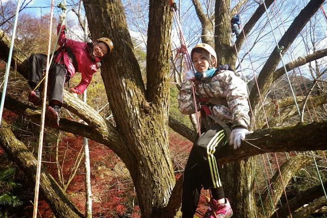 【滋賀高島・木登り】基本のツリーカフェ!枝に座って立って寝転んで。とことん木登り!