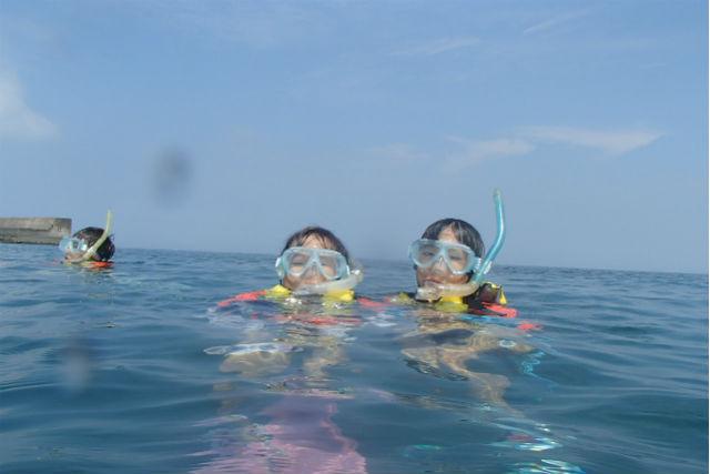 【館山・シュノーケリング】海を覗けば生き物がいっぱいのシュノーケリングツアー!