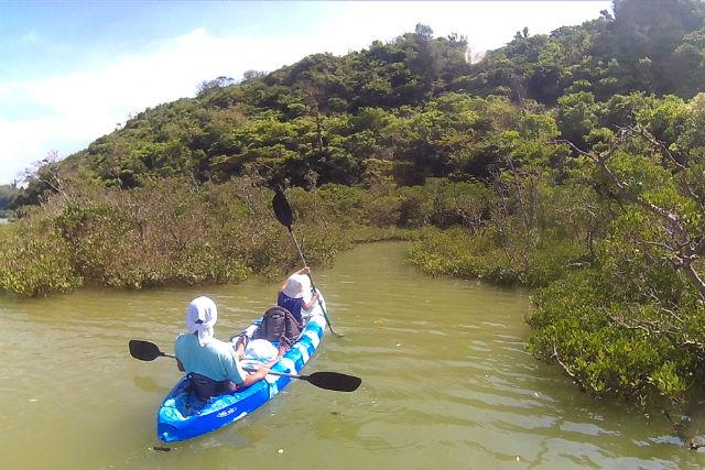 【沖縄北部・シーカヤック】カヤックに乗って、海の森マングローブを見に行こう!