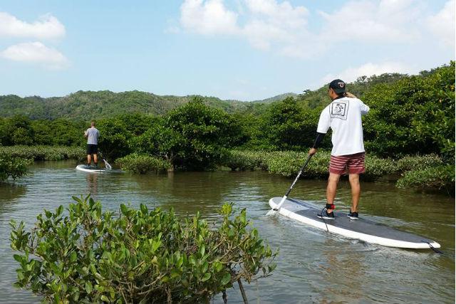 【沖縄北部・SUP】マングローブを見に行こう!のんびりSUPクルージング