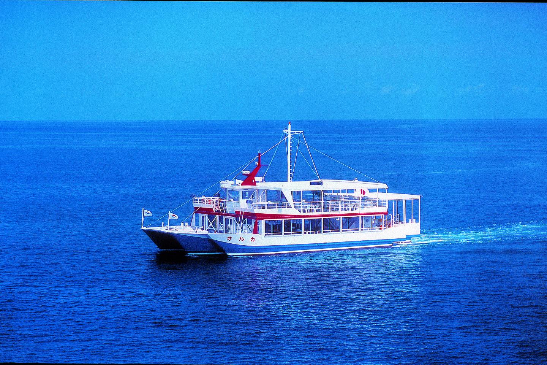 【2.5%還元】【沖縄・クルージング】水中観光船で贅沢クルージング!本当に海の中にいるみたい!【1名から予約可能】