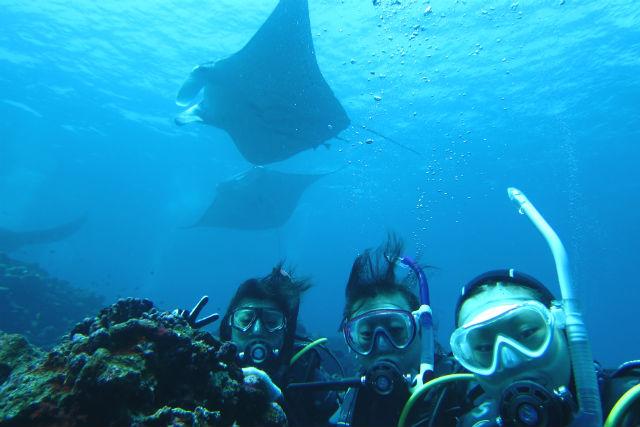 【沖縄・石垣島・シュノーケリング】マンタ&青の洞窟&滝つぼの旅!1日よくばりツアー(送迎付き)