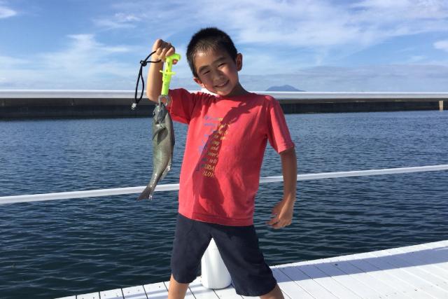 【熊本・天草・イルカウォッチング】イルカの住む島天草でイルカを見て、釣り堀で釣りもしよう!お得な釣り堀セットプラン