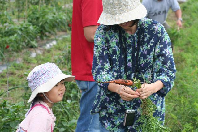 【山梨・収穫体験】無農薬・無化学肥料の新鮮やさいを収穫!60分農業体験