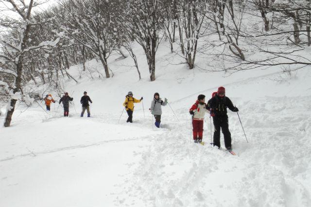 【鳥取・クロスカントリースキー・5時間】雪の上もスイスイ歩ける快適さ!ネイチャースキートレッキング