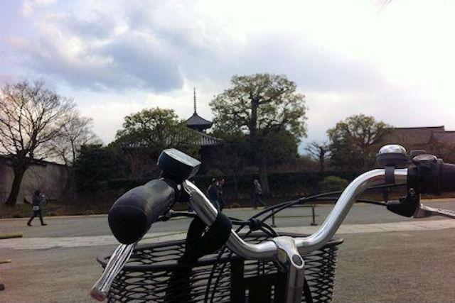 【京都・レンタサイクル】春秋限定&8時間未満でリーズナブル!京都の旬を見に行こう