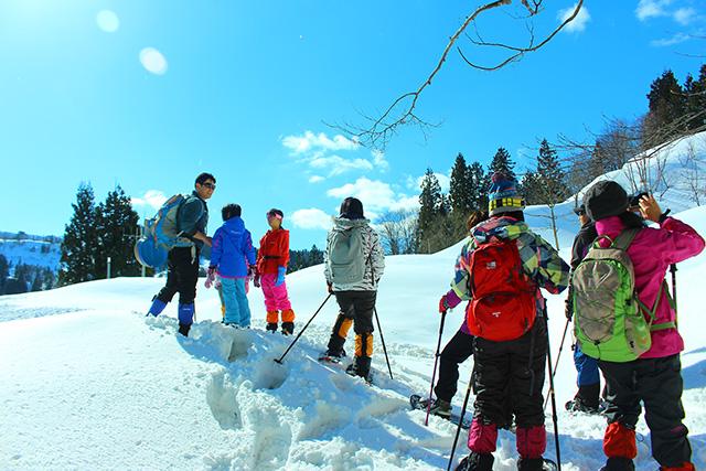 【新潟・津南・スノーシュー】雪景色のジオサイトでハイキング(半日・温泉付)