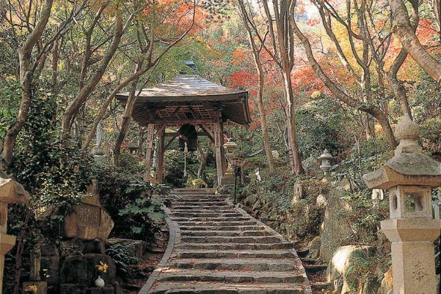 【広島市・観光タクシー・5時間】広島の観光名所&古寺をめぐるCコース