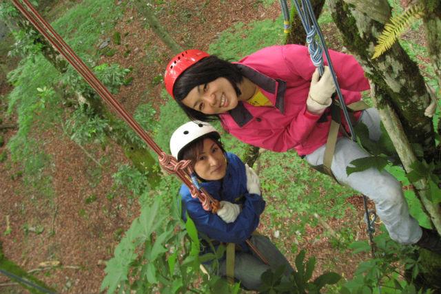【滋賀・木登り KBA】くつきの森で貸切の木登り自然体験!木の暮らしを探る木登りツアー