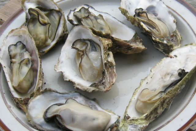 【三重・志摩・バーベキュー】揚げたて牡蛎を、炭火でジュッ!牡蛎食べ放題・海上屋形バーベキュー