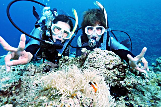 【沖縄・パラセーリング&体験ダイビング】空を飛び、青の洞窟に潜る!とことん遊ぼう