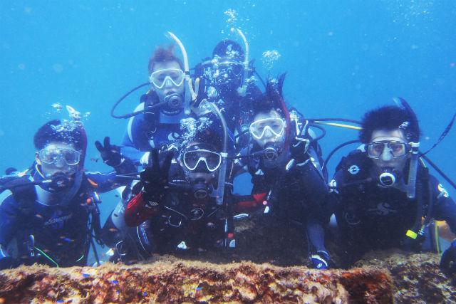 【和歌山・体験ダイビング】お得に潜れる2ダイブ!海中をのぞいてみよう