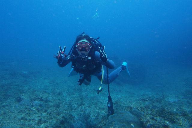 【和歌山・体験ダイビング】プールのように穏やかな海!田辺で体験ダイビング(2ダイブ)