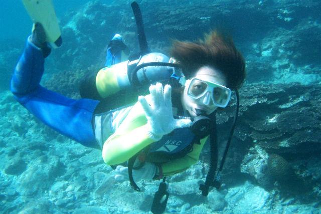 【和歌山・ダイビング】本州で唯一の亜熱帯地域!串本の海ではじめての体験ダイビング