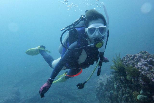 【神奈川・城ヶ島・ダイビング】初心者も安心のプログラム!水中世界に飛び込もう
