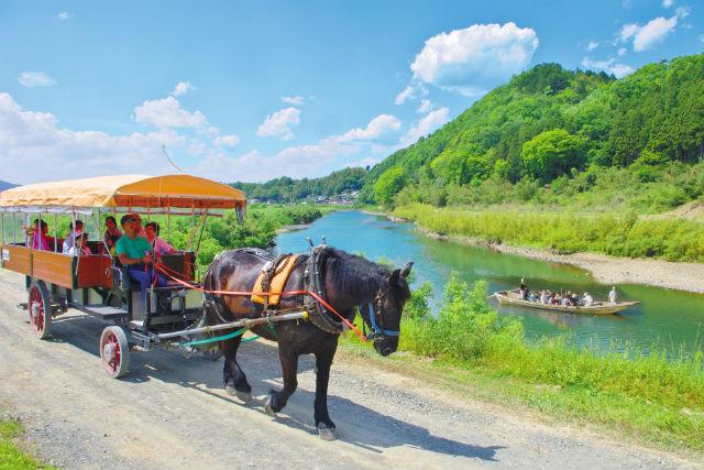 【京都・観光馬車】牧歌的な景色を堪能しよう。のんびり贅沢体験(保津川乗船場行き 片道・約30分)