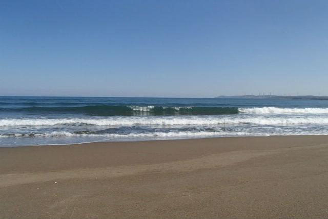 【新潟・サーフィン】日本サーフィン連盟のお墨付き!サーフィン5級検定GETプラン