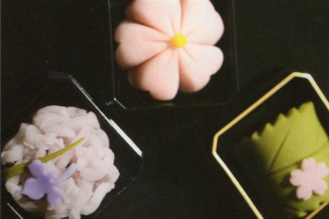 【北海道・小樽・料理体験】できたての美味しさに感動!練り切りを作ろう