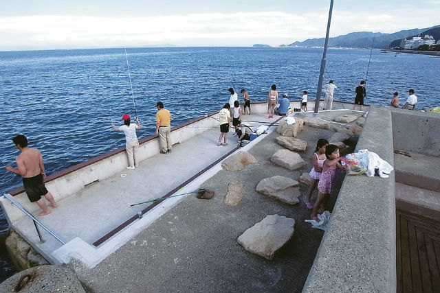 【兵庫・淡路島・釣り】プライベート釣り場で、快適釣り体験(お弁当&温泉付)