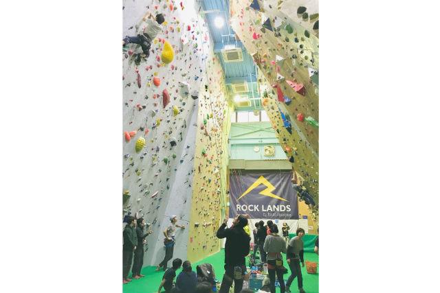 【東京・江戸川区・ボルダリング】都内最大級の広さ!ボルダリング&ロープクライミングを楽しもう!