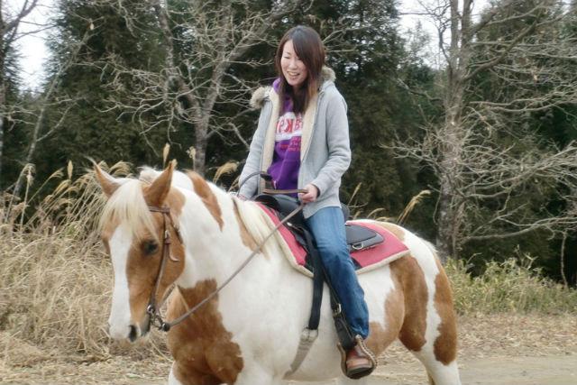 【大分・乗馬体験・半日】森林浴ホーストレッキング!お世話体験付きで馬と仲良くなれます