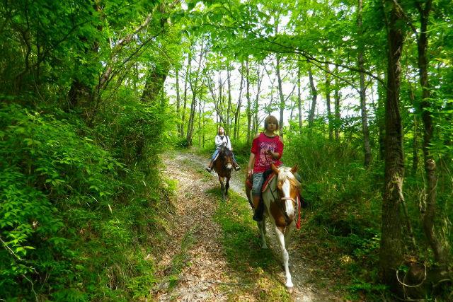 【大分・乗馬体験・1日】馬と一緒にどこまでも!乗馬練習・ホーストレッキング・お世話体験