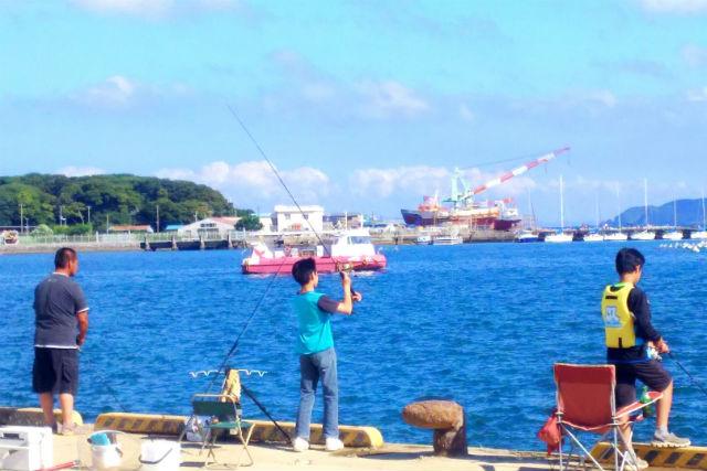 【千葉・館山・釣り体験】初心者大歓迎!手ぶらでOK、のんびり海釣り体験!(90分コース)