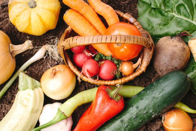 【神奈川・農業体験】とれたて野菜を召し上がれ!お野菜の収穫体験&BBQ