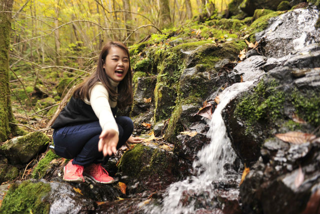 【高知・ケイビング】四万十川の鍾乳洞へ。神秘をめぐるケイビングツアー